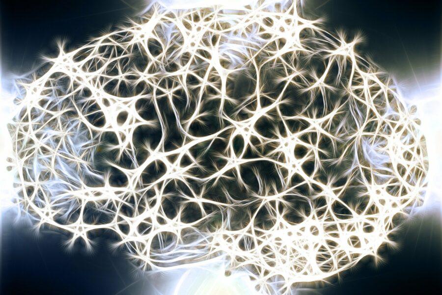 neuroni mozak